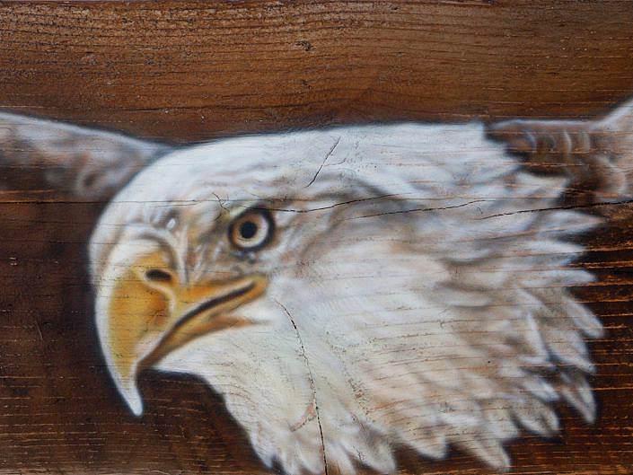 American Steigerhout