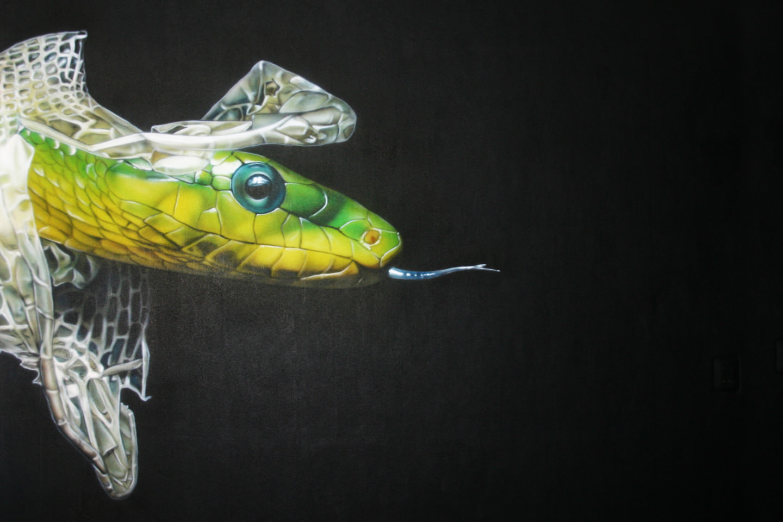 Kleurrijke slang muurschildering in tienerkamer.